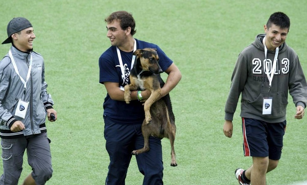 It's a dog's life for hockey stars as mutt disrupts England women's match in Argentina