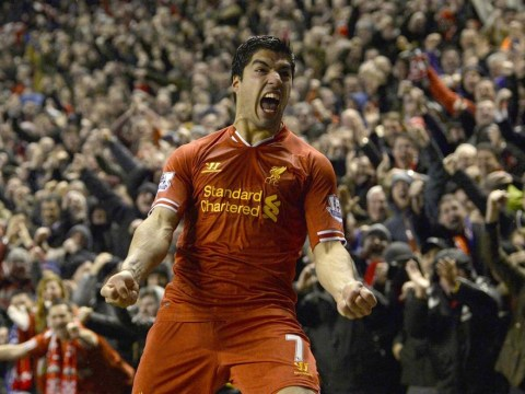 The best and worst January transfers: From Luis Suarez and Nemanja Vidic to Andy Carroll and Fernando Torres