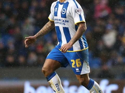Sunderland want Brighton midfielder Liam Bridcutt to help their survival fight