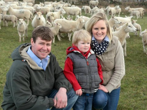 Shepherdess Claire Williams: The farm is the best office in the world