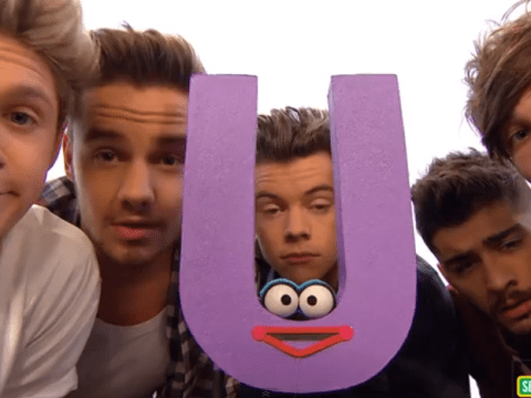 Harry Styles and the One Direction boys sing about What Makes 'U' Useful on Sesame Street