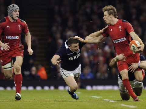 Six Nations 2014: Where can Scotland go from here after Wales thrashing?