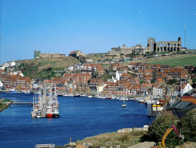 Whitby Bay and Abbey (Picture: Supplied)
