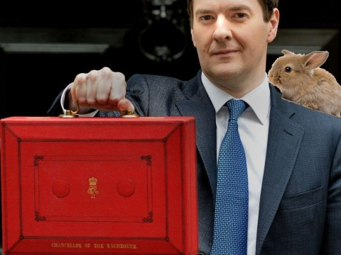 The six things you need to know about the Budget, illustrated with rabbits