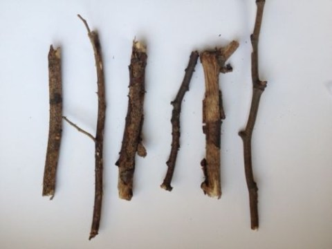 Set of six twigs go on sale on eBay.  Don't all rush at once.