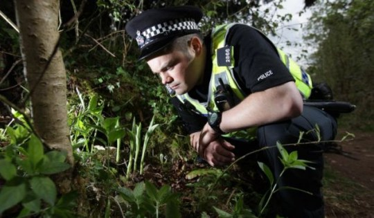 PC Tony March watches over Britain's rarest flower