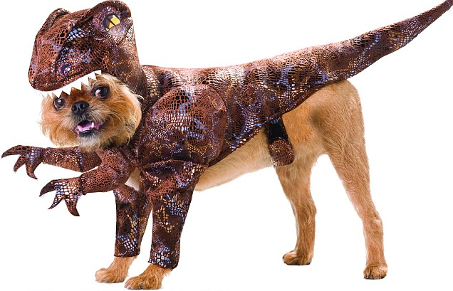 Dinosaur dogs fancy dress for dogs party customes for dogs