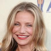 Cameron Diaz may voice the female lead in Green Hornet