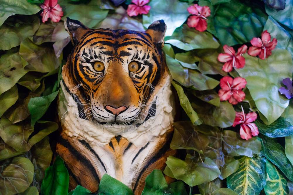Britain's largest cake containing life sized leopards, peacocks and an elephant unveiled at the Cake and Bake show