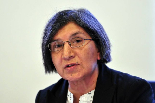 Investigation: United Nations offical Rashida Manjoo (Picture: Getty)