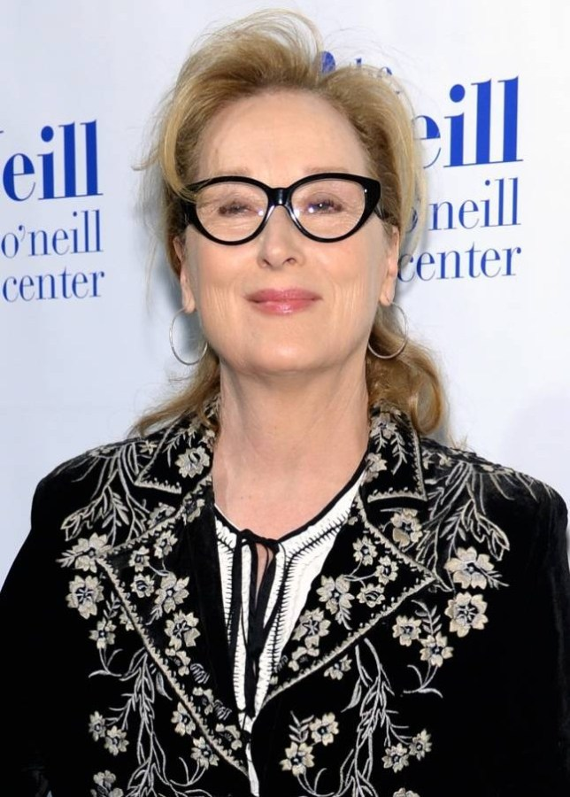 Doubt: Meryl Streep thought she would never get hired Picture: Getty)