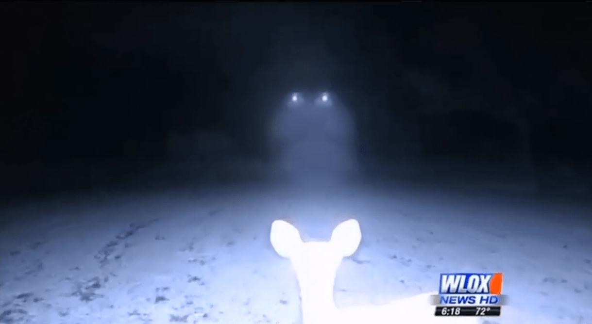 UFO mississippi shattles cumbest bluff