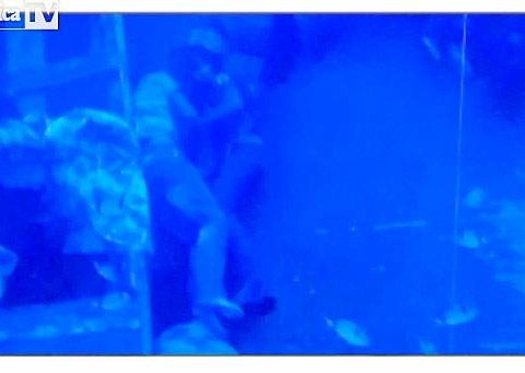 Underwater image shows drowned couple in loving embrace