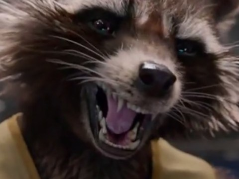 Bradley Cooper's Rocket Raccoon finally finds his voice in the newest Guardians Of The Galaxy trailer