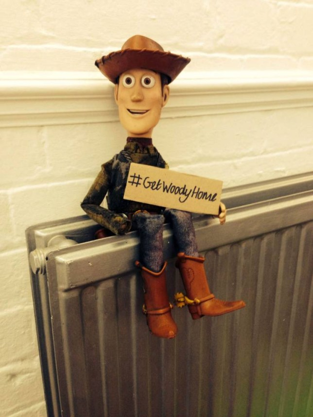 Real life Toy Story: Help reunite lost Woody doll with owner
