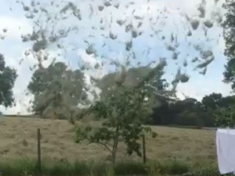 It's raining hay! Dust devil tornado caught on camera in Lancashire