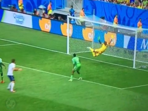 Watch Nigeria goalkeeper Vincent Enyeama make one of the saves of the World Cup