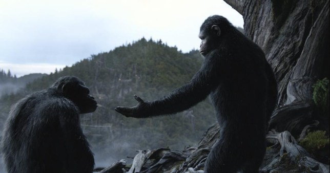 Planet of the Apes, video game