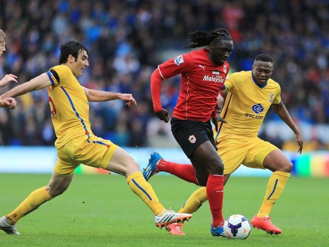 Can Cardiff City boss Ole Gunnar Solskjaer solve the great footballing enigma that is Kenwyne Jones?