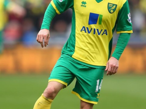 Wes Hoolahan shines as Norwich's pre-season finally kicks off – literally