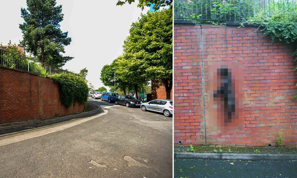 Dog found hanging from metal chain near primary school
