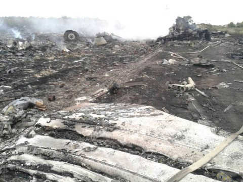 MH17: First pictures emerge of Malaysia Airlines crash site as rebel commander claims responsibility