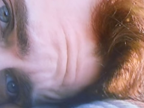 You will never be able to unsee the disturbing secret of Joaquin Phoenix's forehead