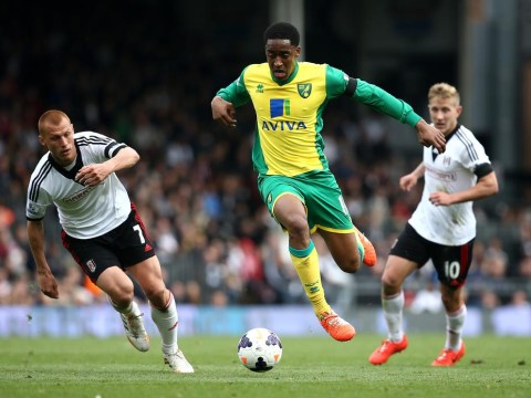 Will Harry Redknapp and QPR get their hands on Norwich City's Leroy Fer?