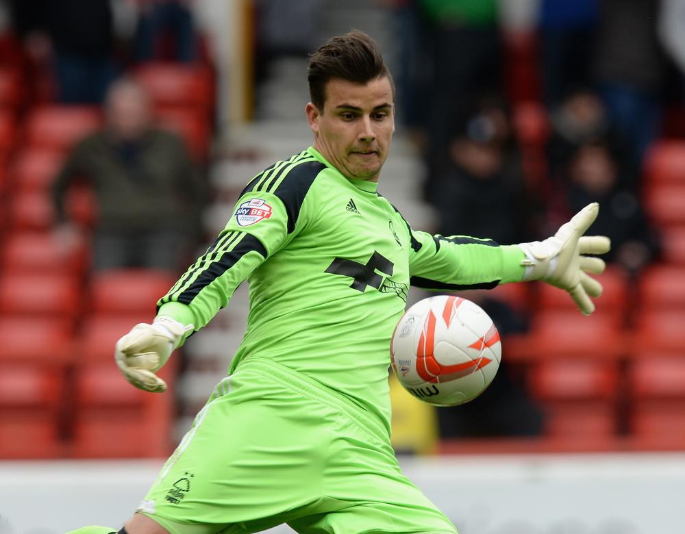 Time to trust Stuart Pearce as Nottingham Forest sell Karl Darlow and Jamaal Lascelles to Newcastle United