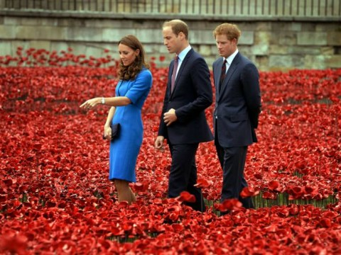 Kate Middleton, Prince William and Prince Harry visit The Tower of London's 'Blood Swept Lands and Seas of Red' poppy installation