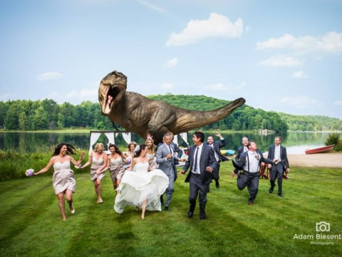 Is this the best wedding photo ever? Jeff Goldblum helps happy couple recreate Jurassic Park