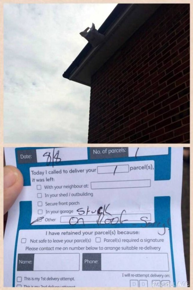 TIM STEWART NEWS LIMITED: Delivery note received by customer Benjamin Ward, 34, of Hove, East Sussex, from courier firm myHermes after they left his parcel stuck to his roof (also pictured).