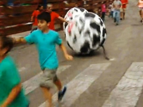 Spanish town swaps bull run for 'ball roll' after locking horns with animal activists