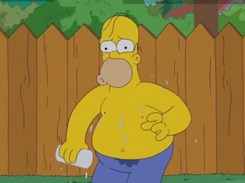 Homer Simpson has done the ice bucket challenge with the sort of consequences you can quite imagine