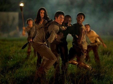 The Maze Runner: 5 young adult films to look forward to in 2014/15