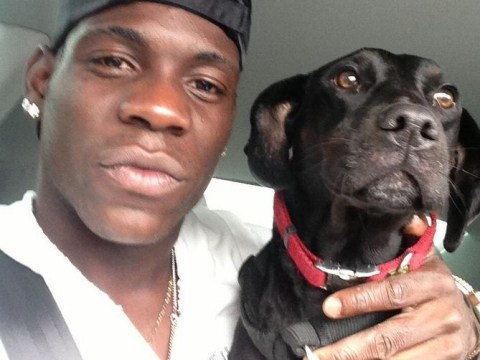 Liverpool's Mario Balotelli suspected to be behind generous five-figure donation to Manchester Dogs' home