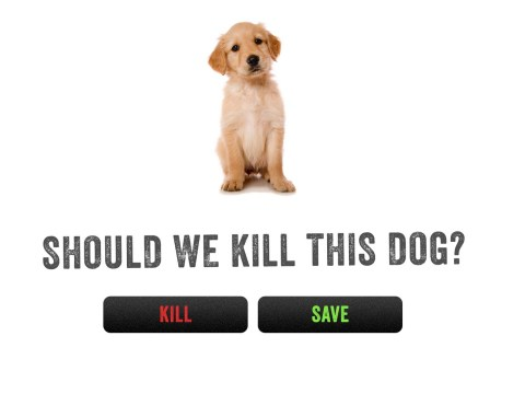 Would you kill this dog?