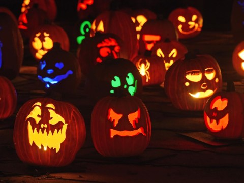 Halloween 2014: 13 reasons to really hate Halloween