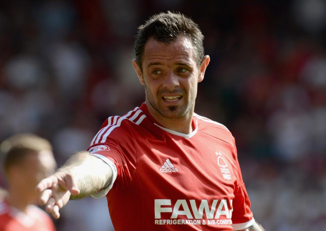 Nottingham Forest must learn how to win without Andy Reid