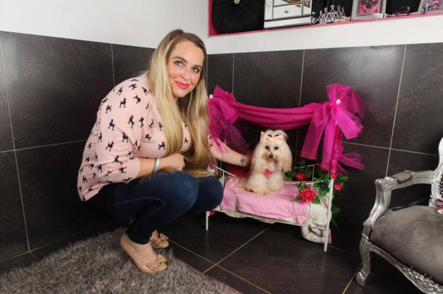 VIDEO AVAILABLE CATERS NEWS.  (PICTURED: BETTY IN HER FOUR POSTER BED)  Never mind a silver spoon - meet the pampered pooch that was born with a diamond fork in her mouth. Spoilt dog Betty lives the high life on the family farm in Essex with her owner Hayley Dexter who has showered the three-year-old pup with lavish gifts. And Hayley and her family have splashed out a whopping £30,000 on Betty since they got her as a tiny puppy three-years-ago. The young Maltese is the envy of the other dogs on the block as she boasts her own bedroom, custom made four poster bed and a wardrobe filled with stylish outfits. She is also fed by hand from her very own Swarovski fork - and is never seen without her signature bling of either a diamond collar or a customised pearl necklace.  SEE MERCURY PRESS