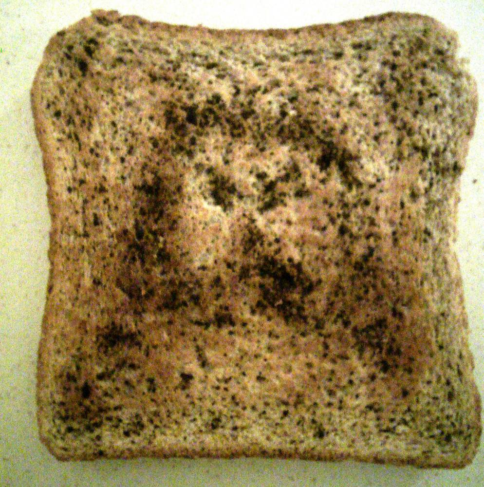 Second coming of Christ: Slice of toast bears face of Jesus himself