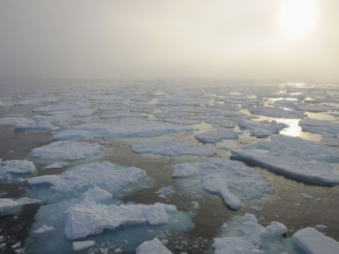 Ancient viruses 'could be unleashed' on the world as the ice caps melt