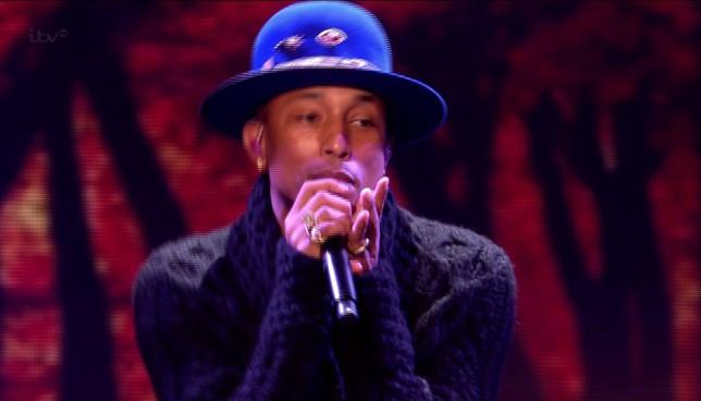 Pharrell Williams praises Lauren Platt after X Factor performance