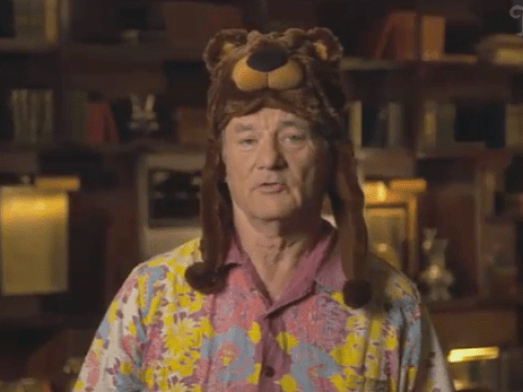 Can Bill Murray do no wrong? Gives epically random intro to NFL London game wearing a bear hat