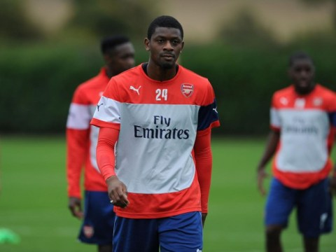 Abou Diaby WILL be offered new Arsenal deal if he regains full fitness, confirms Arsene Wenger