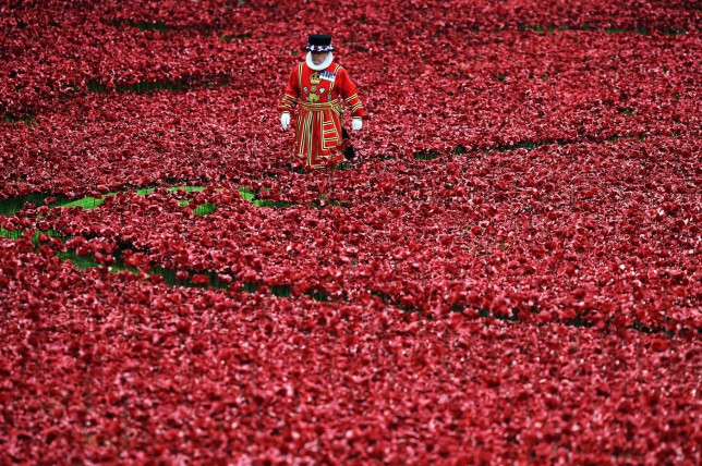 Which side should you wear a poppy on?