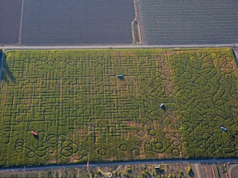 Family get so lost in world's largest maze that they call the police