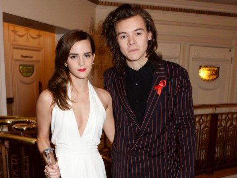 #hemma: The internet is shipping Emma Watson and Harry Styles pretty hard right now