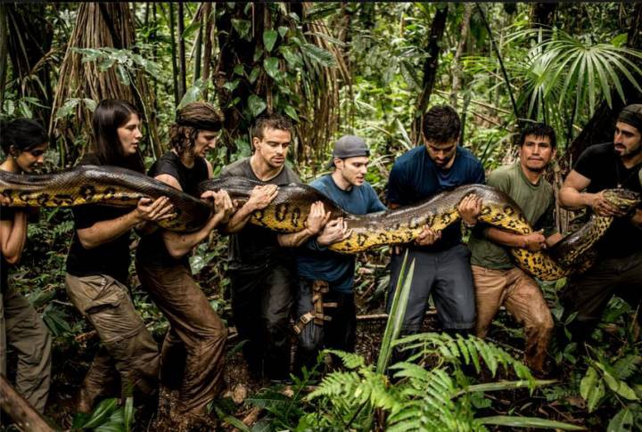 Naturalist is eaten alive by anaconda for television show but experiment is not to everyone's taste