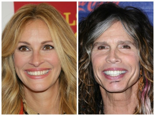 Julia Roberts and Steve Tyler make unusual lookalikes - but the similarity is there (Pictures: Rex)